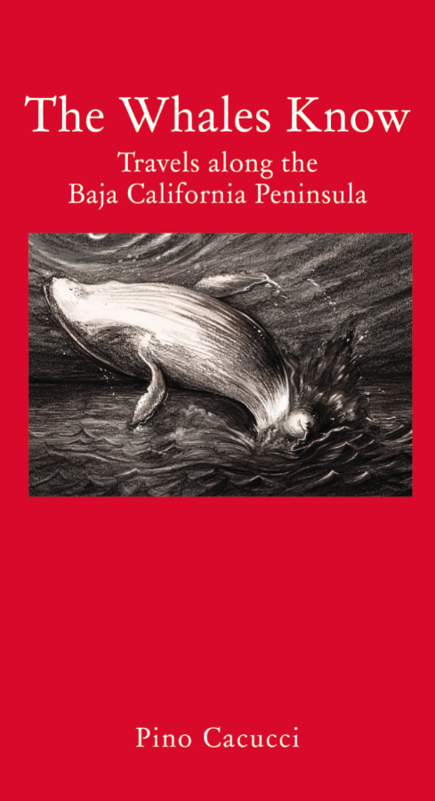 Cover of The Whales Know: Travels along the Baja California Peninsula by Ponp Cacucci
